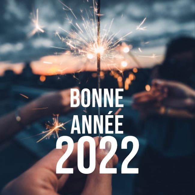 Image De Humour Bonne annee 2022