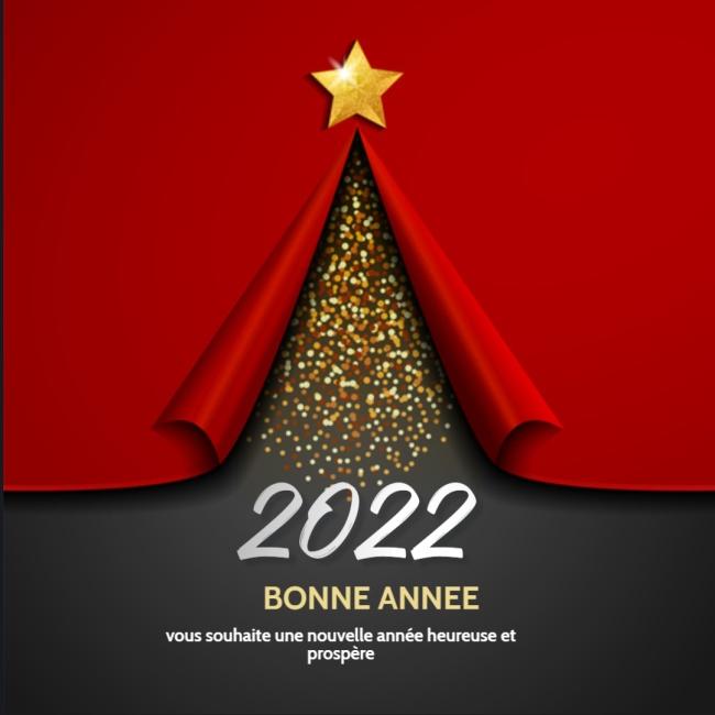 Humour De Bonne annee Image 2022