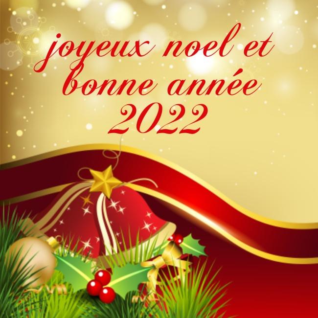 joyeux noël et bonne année 2022 Images Humour