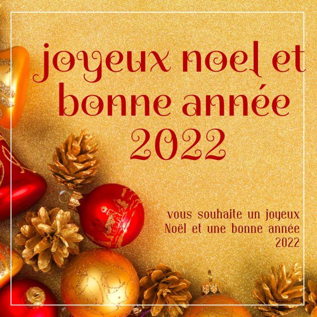 Humour joyeux noel et bonne année 2022