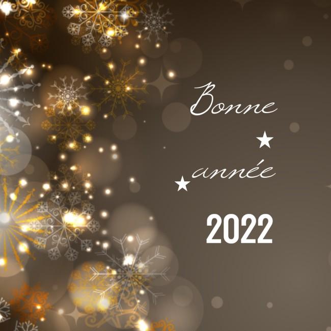 Humour Image Bonne annee 2022 Nouvel an