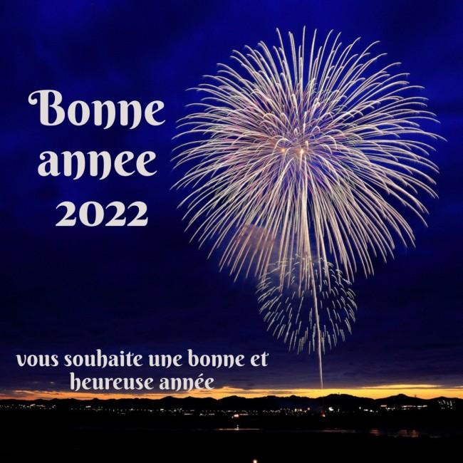 2022 Humour Bonne annee Carte de Voeux